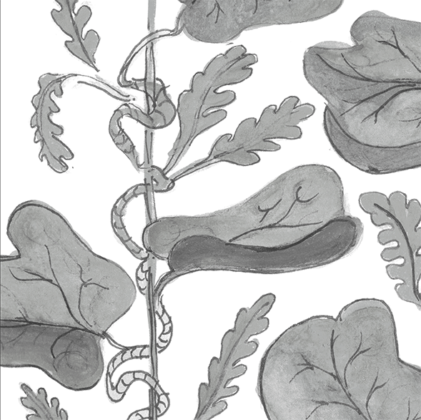 Linen fabric printed with hand painted botanical design of vine in grey on white background